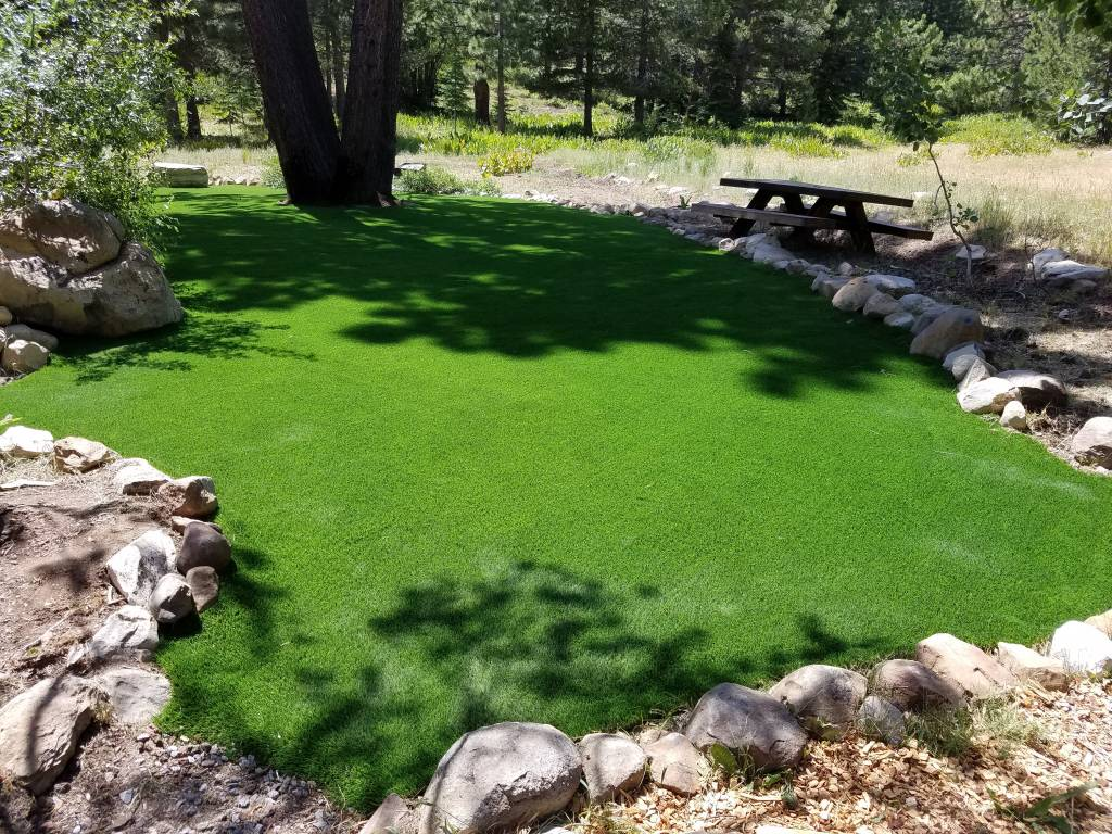 Artificial Turf Reno NV