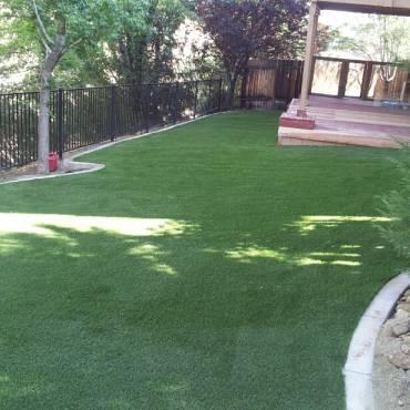 Backyard Artificial Grass