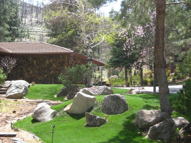 Artificial Turf Landscaping - Carson City