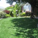 Artificial Turf - Lawn