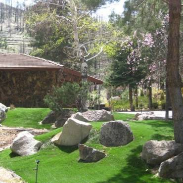 Standard Maintenance Program for Synthetic Grass