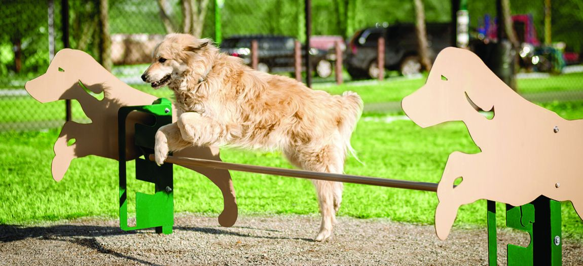 Site Furnishings - Dog Parks